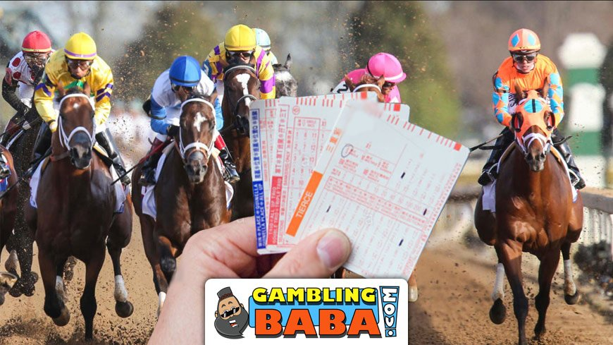 Free Indian Horse Racing Tips That Will Make You a Winner